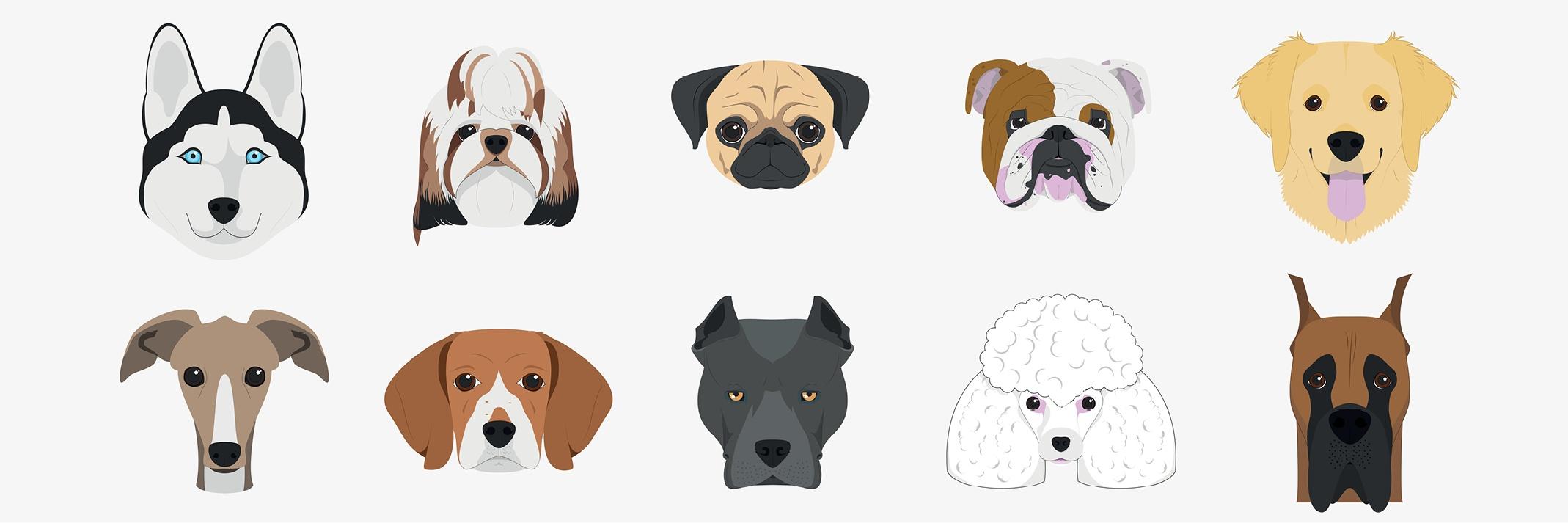 Illustration Blog Dogs.jpg