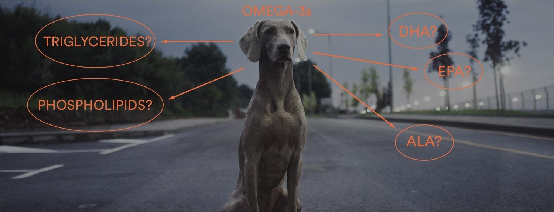 PetFoodOmega-3s.jpg