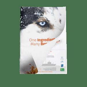 Whitepaper - One ingredient, many benefits - Mockup (1)