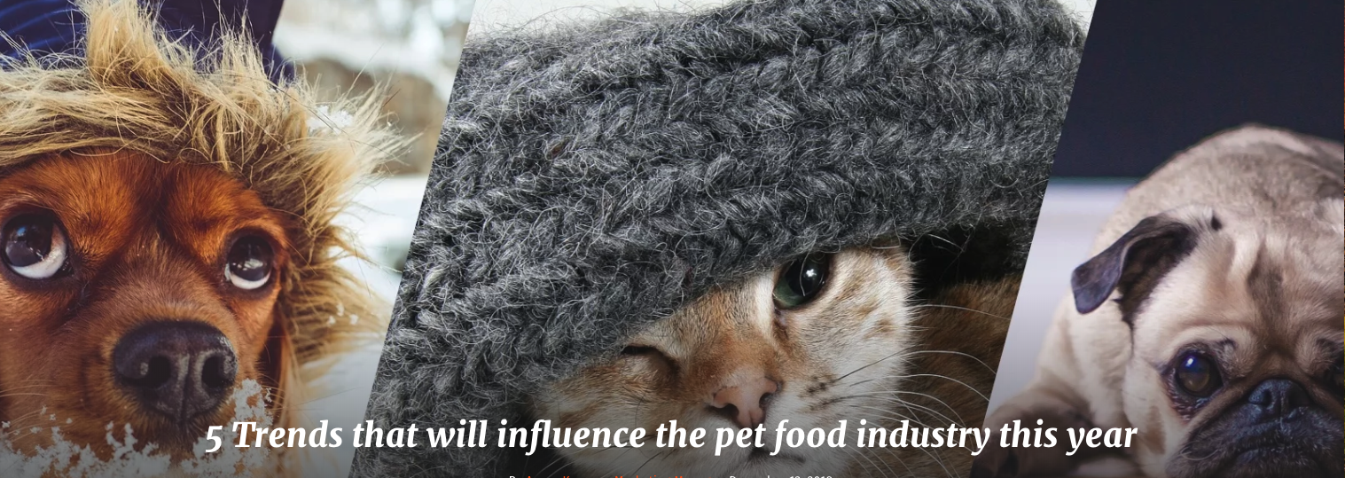 QRILL Pet_Pictures_Blog_Pictures_5 Trends that will influence the pet food industry this year