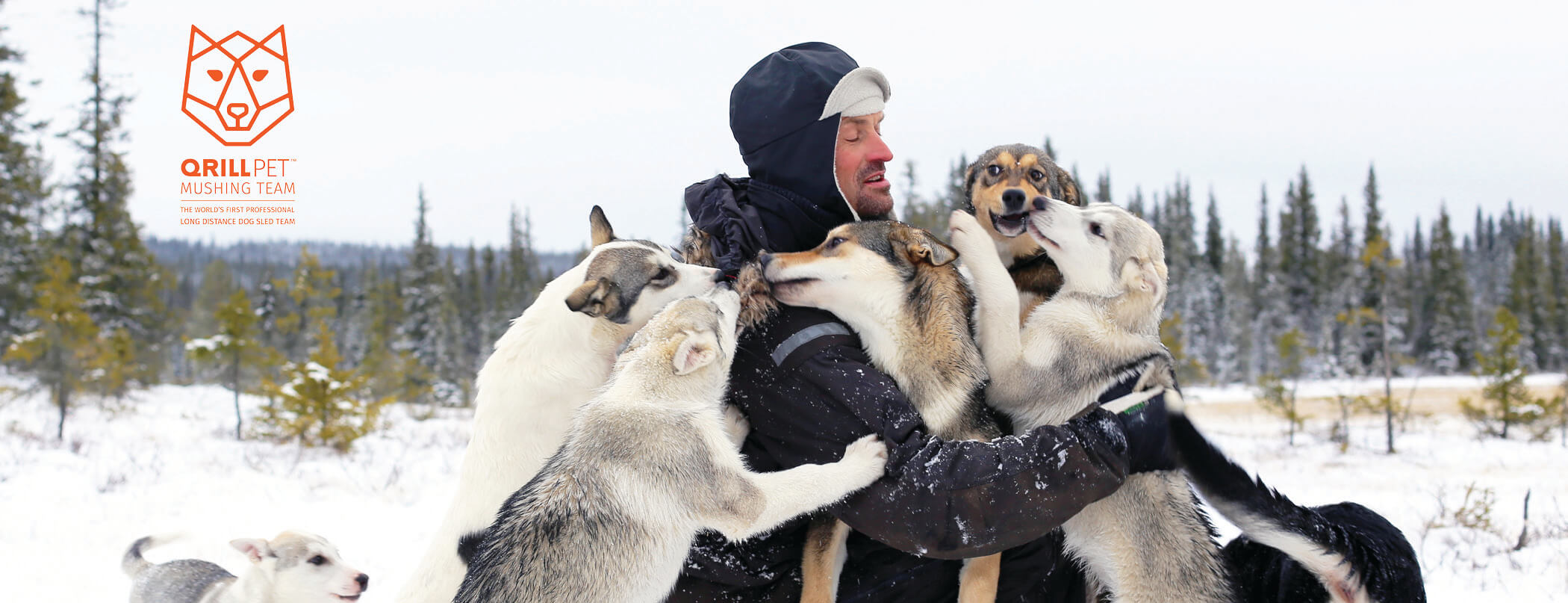 TeamQRILL Pet Dog Mushing Website Picture Small.jpg