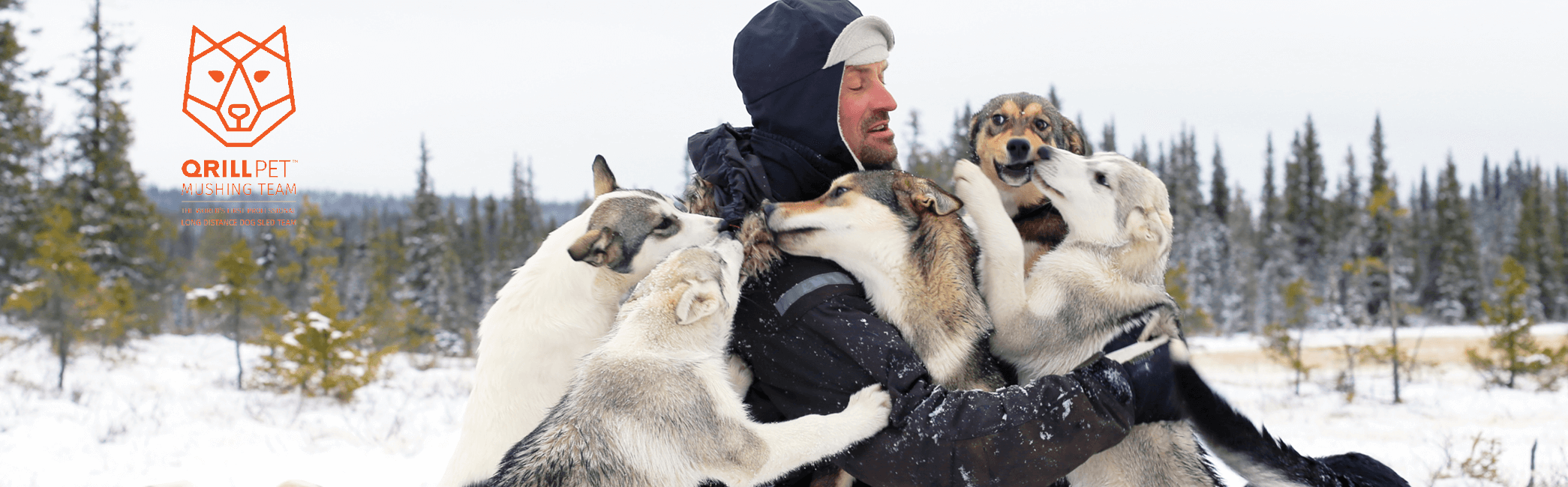 TeamQRILL Pet Dog Mushing Website Picture