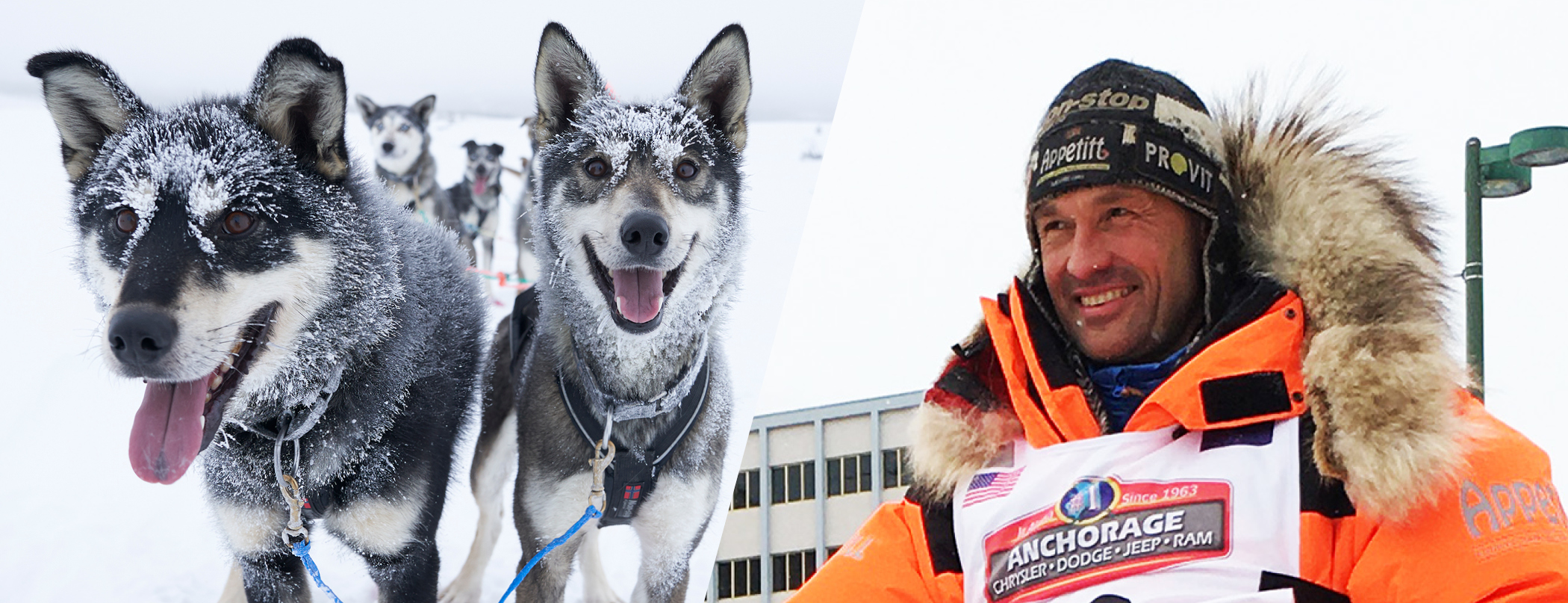 Thomas Wærner and Lead Dog Team QRILL Pet